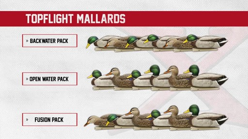 Avian-X Open Water Mallard Decoys 6 Pack - image 2 from the video