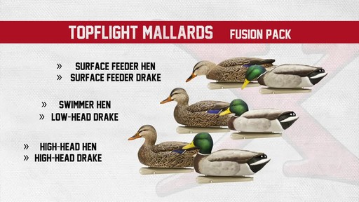 Avian-X Open Water Mallard Decoys 6 Pack - image 5 from the video