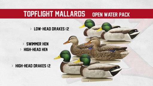 Avian-X Open Water Mallard Decoys 6 Pack - image 6 from the video