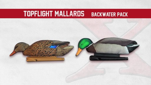 Avian-X Open Water Mallard Decoys 6 Pack - image 7 from the video