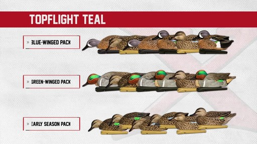Avian-X Top Flight Teal Early Season Duck Decoys 6 Pack - image 1 from the video
