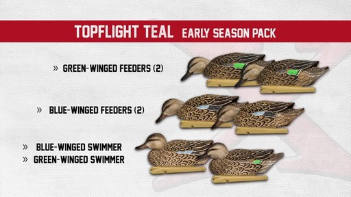 Avian-X Top Flight Teal Early Season Duck Decoys 6 Pack - image 7 from the video