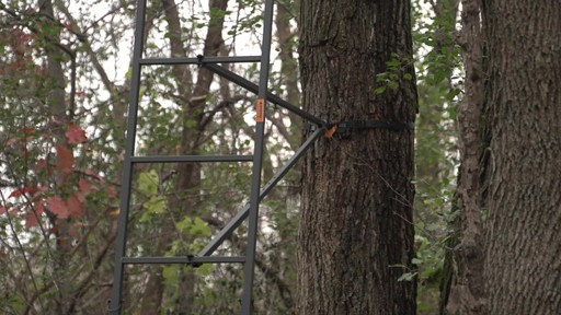 Guide Gear 18' Jumbo Ladder Tree Stand - image 8 from the video