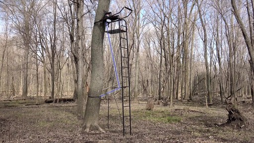 Primal Tree Stands 22' Mac Daddy Deluxe Ladder Tree Stand With Jaw And Truss Stabilizer System - image 4 from the video