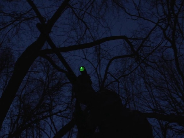 Laser Genetics ND1 SubZero Tactical Laser Sight - image 2 from the video