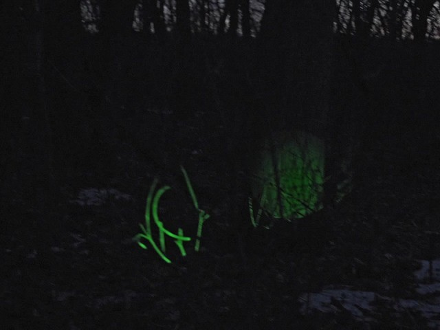 Laser Genetics ND1 SubZero Tactical Laser Sight - image 3 from the video