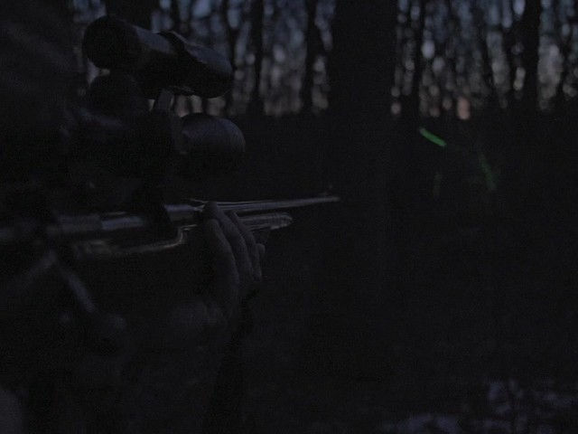 Laser Genetics ND1 SubZero Tactical Laser Sight - image 5 from the video