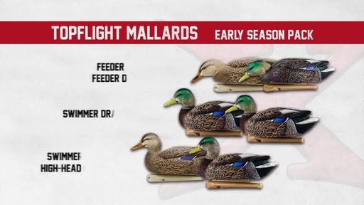Avian-X TopFlight Late Season Mallards 6 Pack - image 4 from the video
