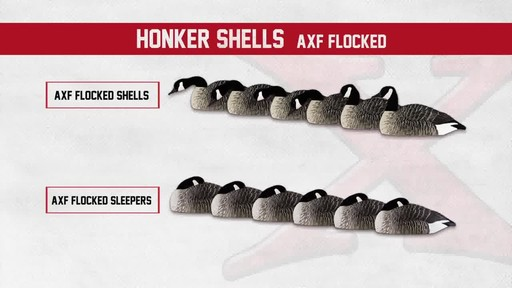 Avian-X Painted Canada Goose Sleeper Shells 6 Pack - image 10 from the video