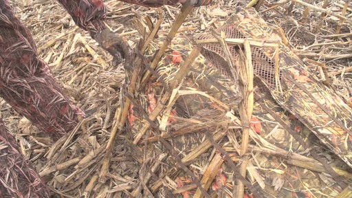 Guide Gear Deluxe Waterfowl Camo Hunting Blind Mossy Oak Blades - image 6 from the video