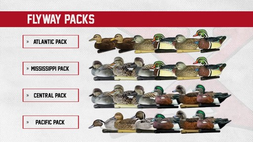 Avian-X Top Flight Central Flyway Pack 6 Pack - image 2 from the video