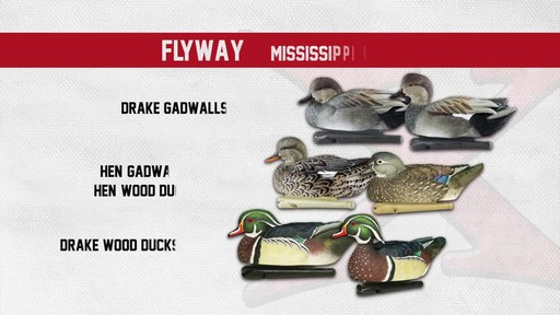 Avian-X Top Flight Central Flyway Pack 6 Pack - image 5 from the video