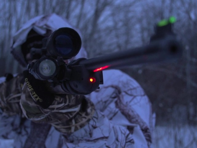 RUGER 10/22 LASER SIGHT        - image 4 from the video