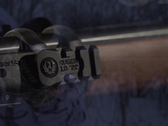 RUGER 10/22 LASER SIGHT        - image 9 from the video