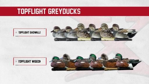 Avian-X Top Flight Gadwall Gray Duck Decoys 6 Pack - image 1 from the video