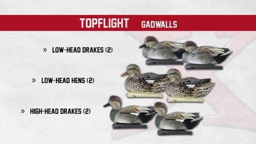 Avian-X Top Flight Gadwall Gray Duck Decoys 6 Pack - image 4 from the video