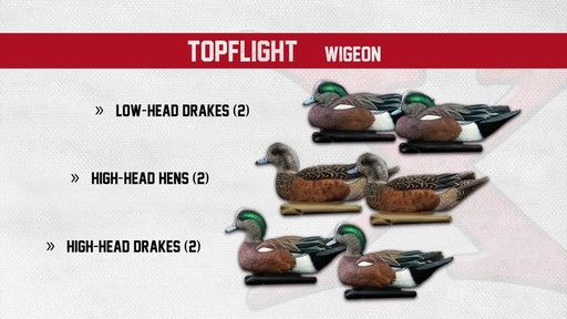 Avian-X Top Flight Gadwall Gray Duck Decoys 6 Pack - image 8 from the video