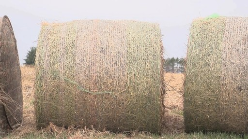 Guide Gear Hay Bale Archery Blind - image 10 from the video