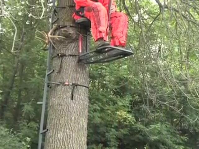 Guide Gear® Climbing Stick and Tree Stand Combo - image 2 from the video