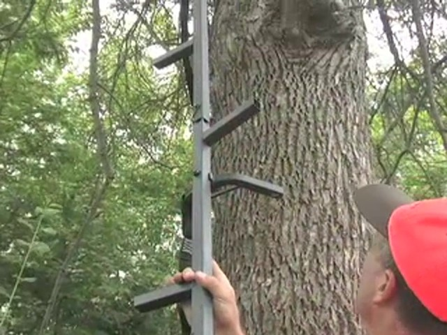 Guide Gear® Climbing Stick and Tree Stand Combo - image 3 from the video
