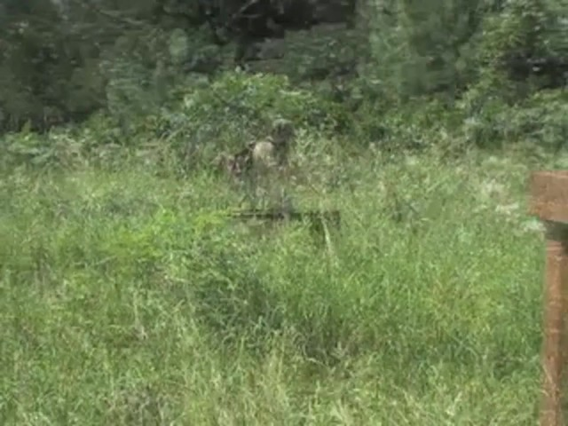 Crosman® Nitro Venom Air Rifle  - image 10 from the video