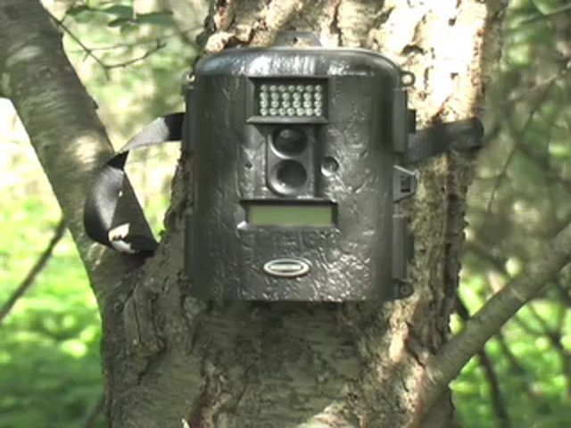 Moultrie® Game Spy™ D55IR 5 - megapixel Infrared Trail Camera - image 1 from the video