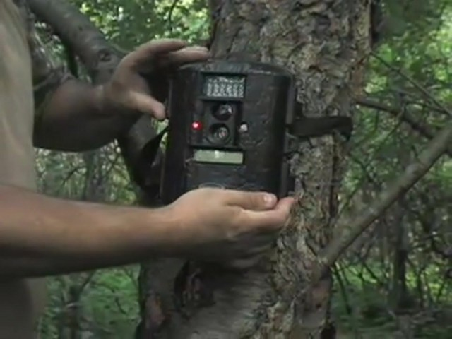 Moultrie® Game Spy™ D55IR 5 - megapixel Infrared Trail Camera - image 8 from the video