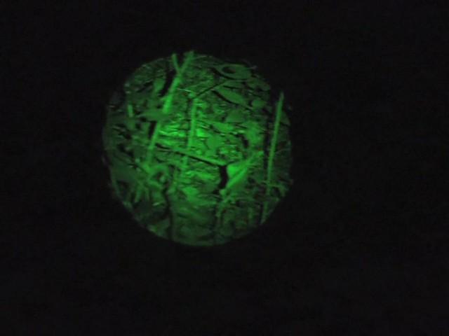 Laser Genetics® AR - 15 Laser Designator - image 1 from the video