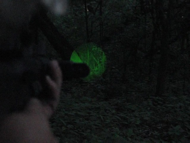 Laser Genetics® AR - 15 Laser Designator - image 5 from the video