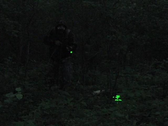 Laser Genetics® AR - 15 Laser Designator - image 6 from the video