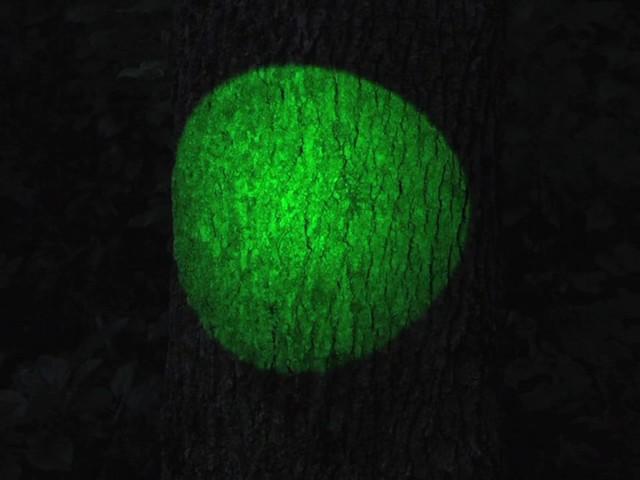 Laser Genetics® AR - 15 Laser Designator - image 7 from the video