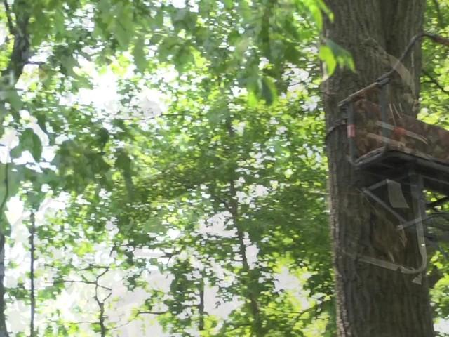 Guide Gear 174 Deluxe 16 2 Man Ladder Tree Stand 187 Sportsman