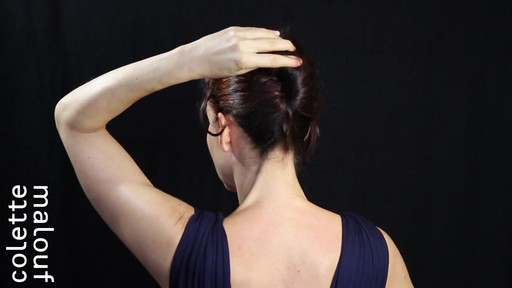 Colette Malouf M Pin How-To: Long Hair French Twist - image 4 from the video