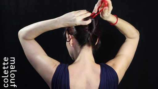 Colette Malouf M Pin How-To: Long Hair French Twist - image 6 from the video