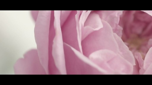 Jurlique 30th Anniversary Precious Rose - image 10 from the video