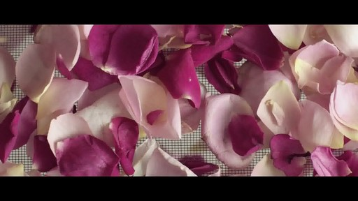 Jurlique 30th Anniversary Precious Rose - image 5 from the video