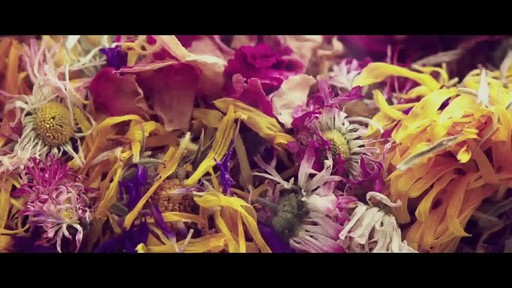 Jurlique 30th Anniversary Precious Rose - image 6 from the video