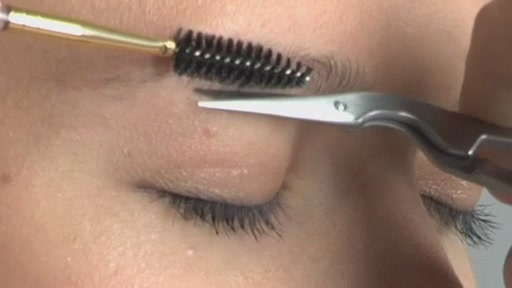 Tweezerman Beautiful Brows - image 2 from the video