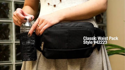 Travelon Anti-Theft Classic Waist Pack - eBags.com - image 1 from the video
