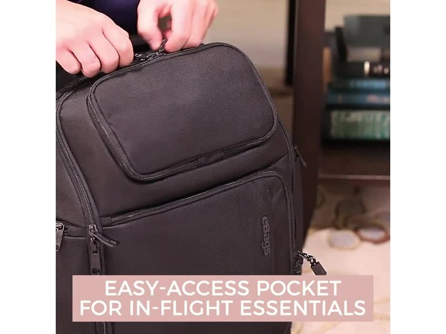 eBags Professional Flight Laptop Backpack - image 3 from the video