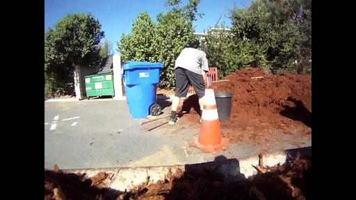Eagle Creek - Buena Vista Volunteering - image 4 from the video