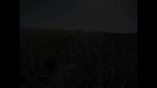 Eagle Creek - Buena Vista Volunteering - image 7 from the video