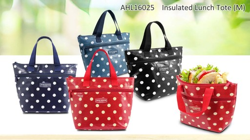 Jacki Design Polka Dot Insulated Lunch Bags - Shop eBags.com - image 3 from the video