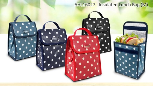 Jacki Design Polka Dot Insulated Lunch Bags - Shop eBags.com - image 6 from the video