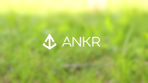 Ankr GPS Tracker - eBags.com - image 10 from the video