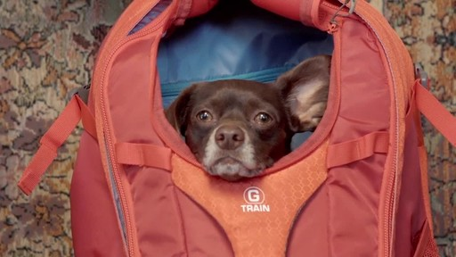 Kurgo G-Train K9 Backpack - image 9 from the video
