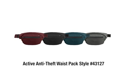 Travelon Anti-Theft Active Waist Pack - on eBags.com - image 10 from the video