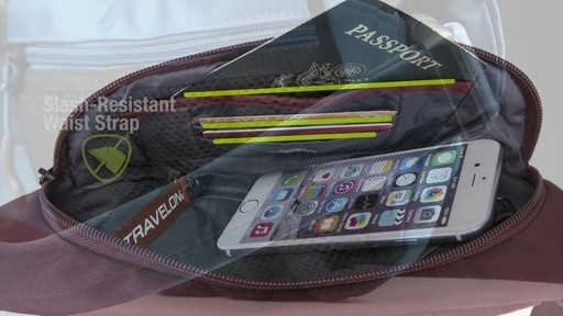 Travelon Anti-Theft Active Waist Pack - on eBags.com - image 7 from the video
