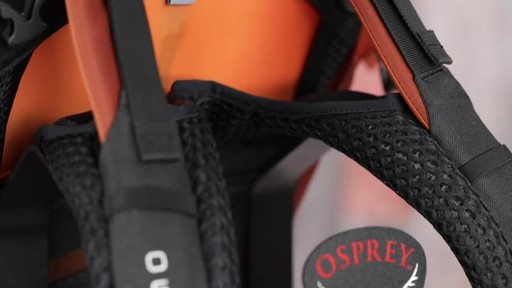 Osprey Aether and Ariel Anti-Gravity Hiking Packs - image 8 from the video