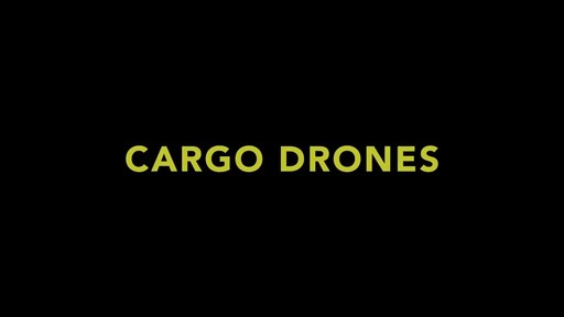 Parrot Airborne Cargo Minidrone - Shop eBags.com - image 1 from the video